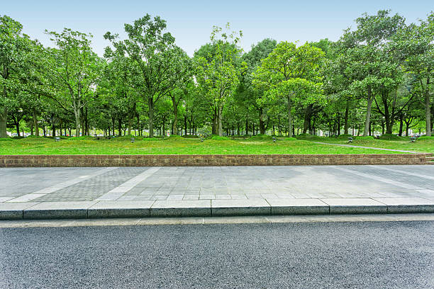 urban road with green trees stock photo