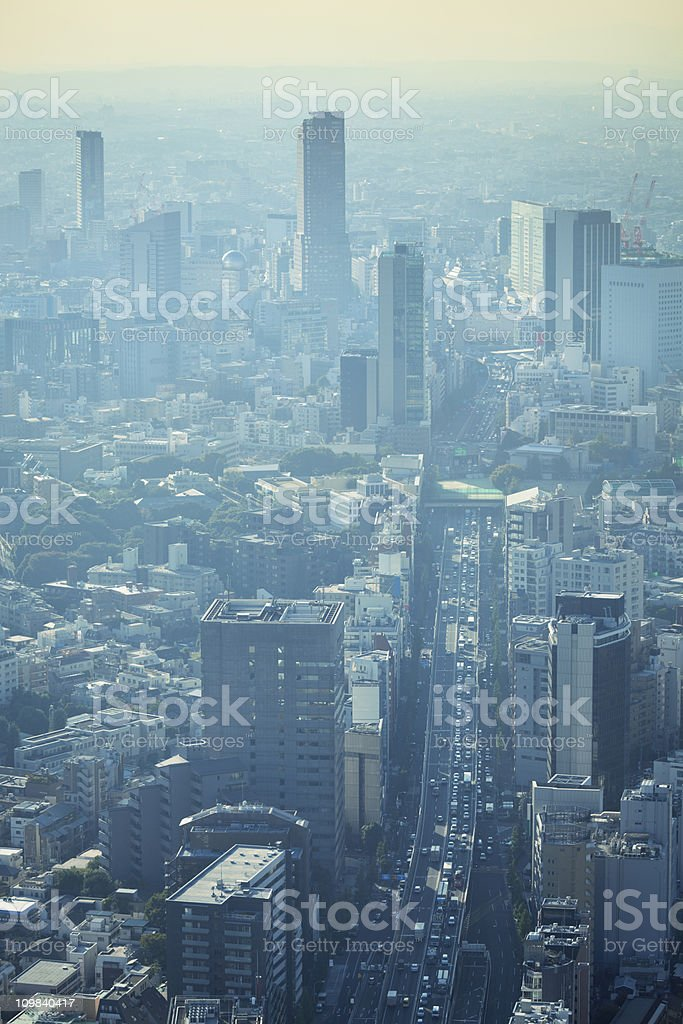 Urban Smog and Air Pollution over City Skyline, Tokyo, Japan royalty-free stock photo