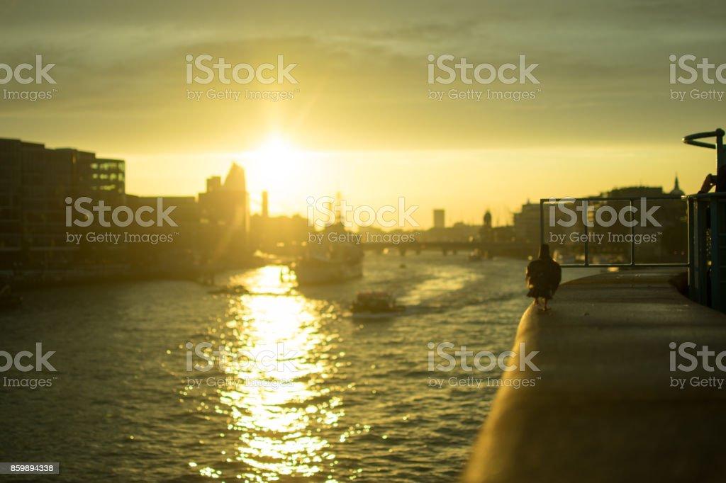 Urban sunset stock photo