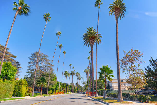 Urban views of the Beverly Hills area and residential buildings on the Hollywood hills. stock photo