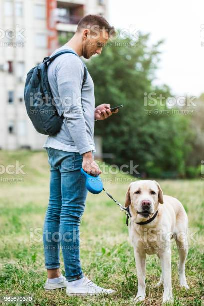 Urban young man is taking a walk with his dog while texting on picture id965670370?b=1&k=6&m=965670370&s=612x612&h=mqiqpy xmgko5mrhatyzoy3ztbnbrfim4lpxggixy40=