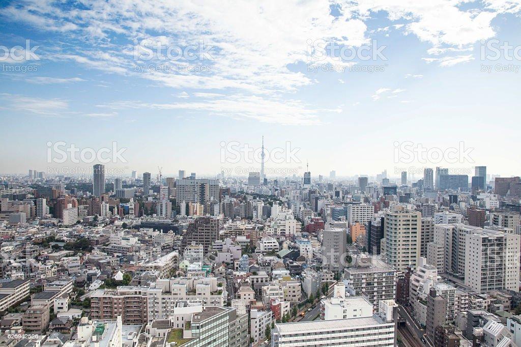 Urbanscape,Tokyo Skytree stock photo