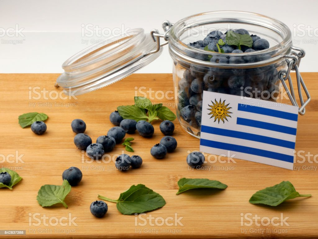 Uruguay flag on a wooden plank with blueberries isolated on white stock photo