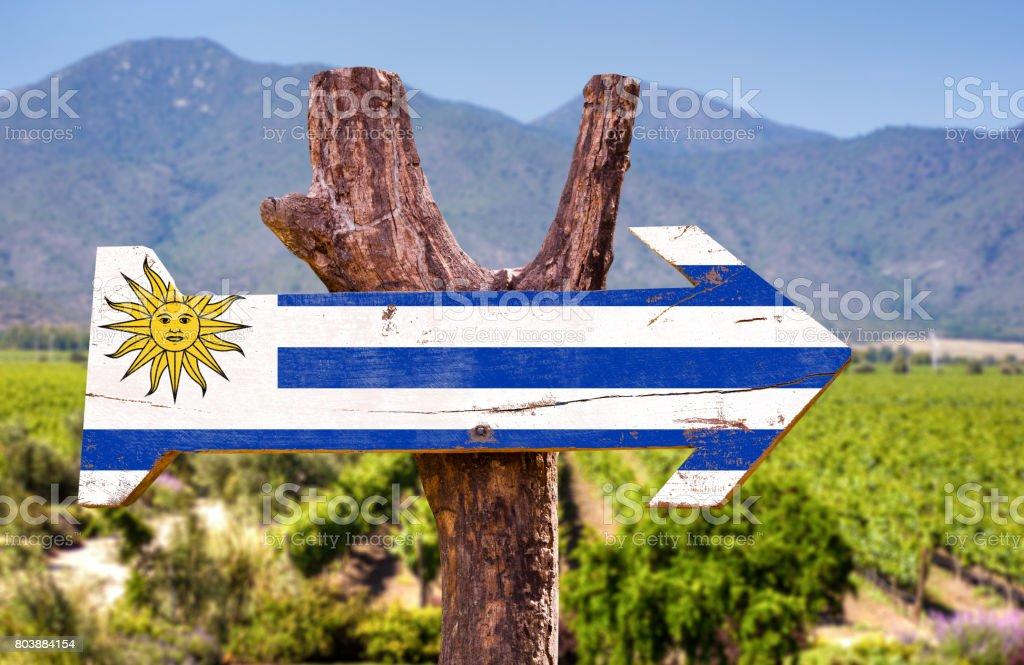 Uruguay winery direction sign stock photo