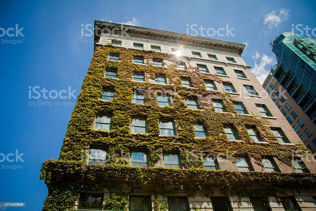 Usa Apartments. Good life in old building covered with ivy stock photo