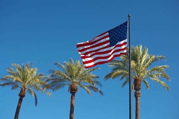 Usa flag and palms on blue sky stock photo