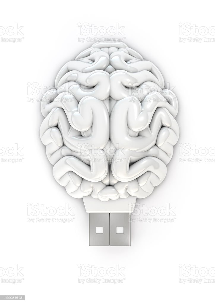 Usb brain stock photo