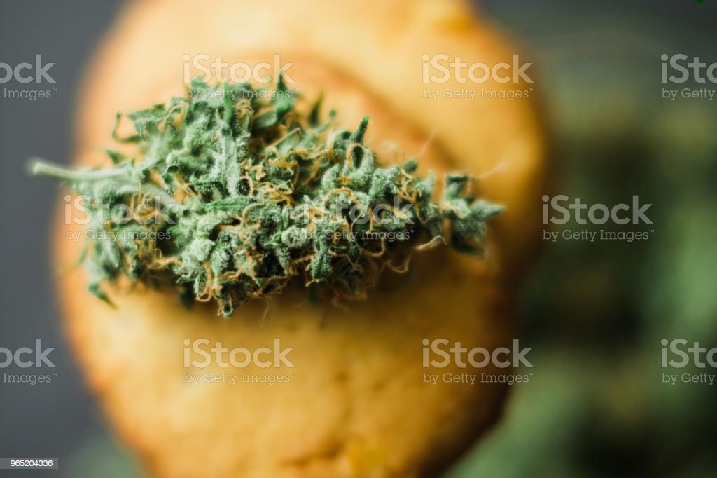 use CBD Close up Cookies with cannabis and buds of marijuana royalty-free stock photo