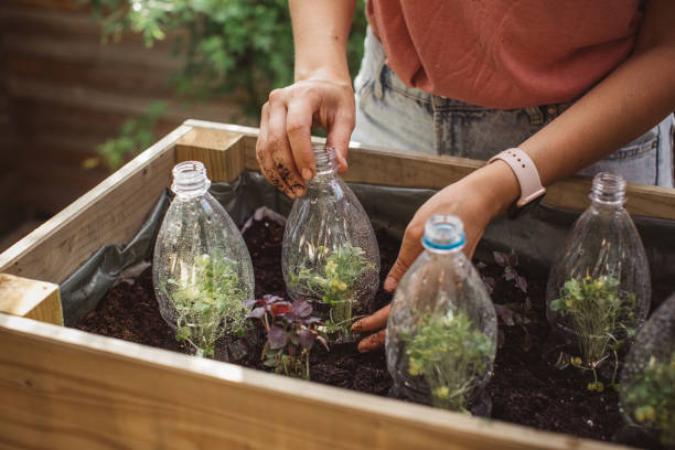 Use old plastic bottles in garden Gardening crafts made with recycled plastic bottles, environmental awareness is important to save our planet social responsibility stock pictures, royalty-free photos & images