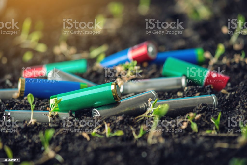 Used alkaline batteries lie in the soil where plants grow. Concept of environmental pollution with toxic household waste stock photo