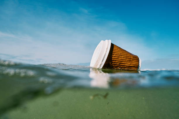 used discarded paper coffee cup floating on the sea surface. stock photo