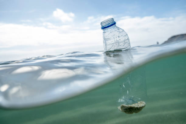 used plastic water bottle floating on the sea surface. - trash stock photos and pictures