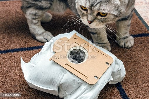 istock used synthetic vacuum cleaner bag and scottish fold cat on brown mat background 1194535386