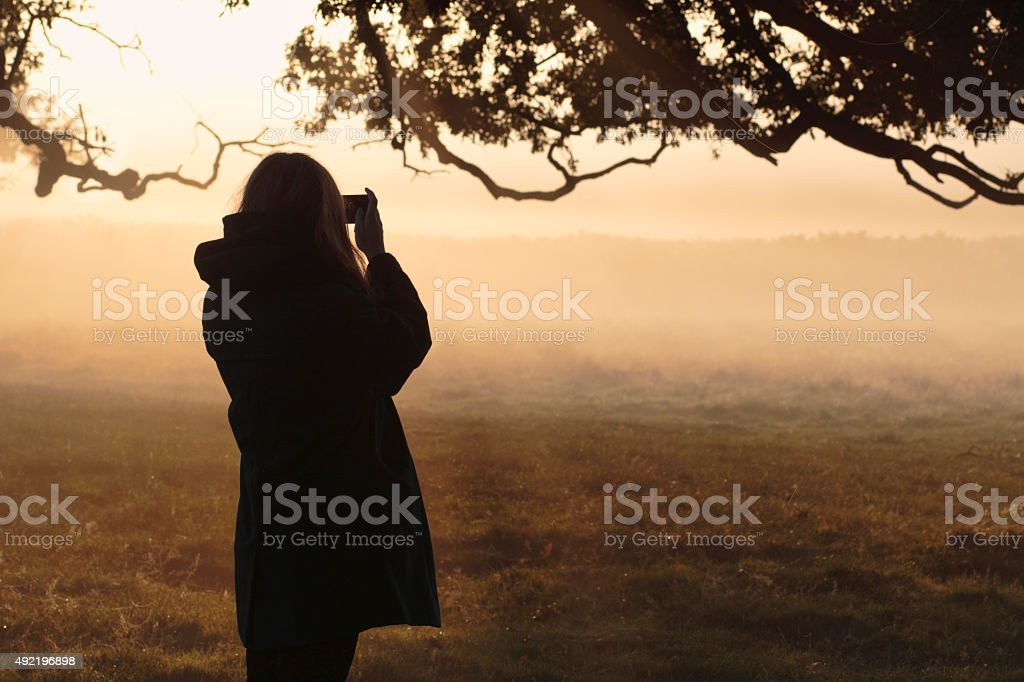 Mobile phone photo foggy autumn landscape Latvian outdoor girl stock photo