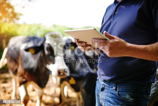 Shot of a farmer using a digital tablet on his farm