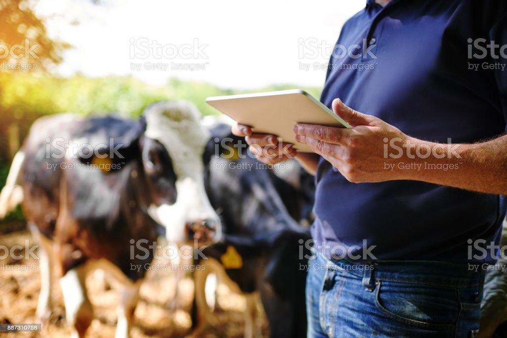 Using apps designed for the agribusiness stock photo