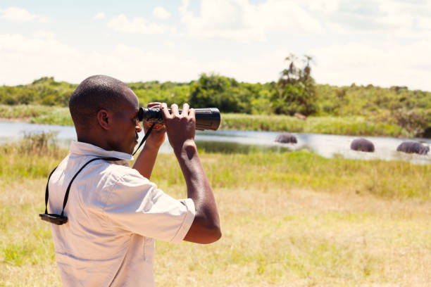 Using binoculars at a safari in east Africa stock photo