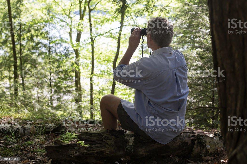 Using Binoculars in Woods stock photo