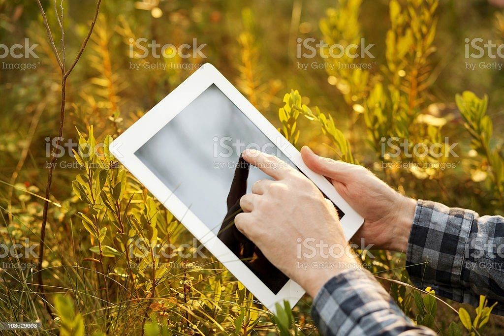 Using Digital Tablet royalty-free stock photo