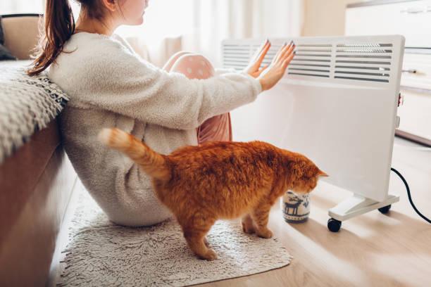 met behulp van kachel thuis in de winter. vrouw haar handen met kat opwarming van de aarde. stookseizoen. - koud stockfoto's en -beelden