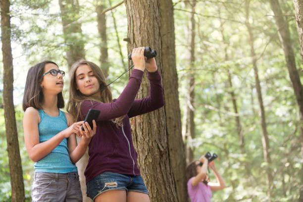 Using Smartphone to Study Nature stock photo