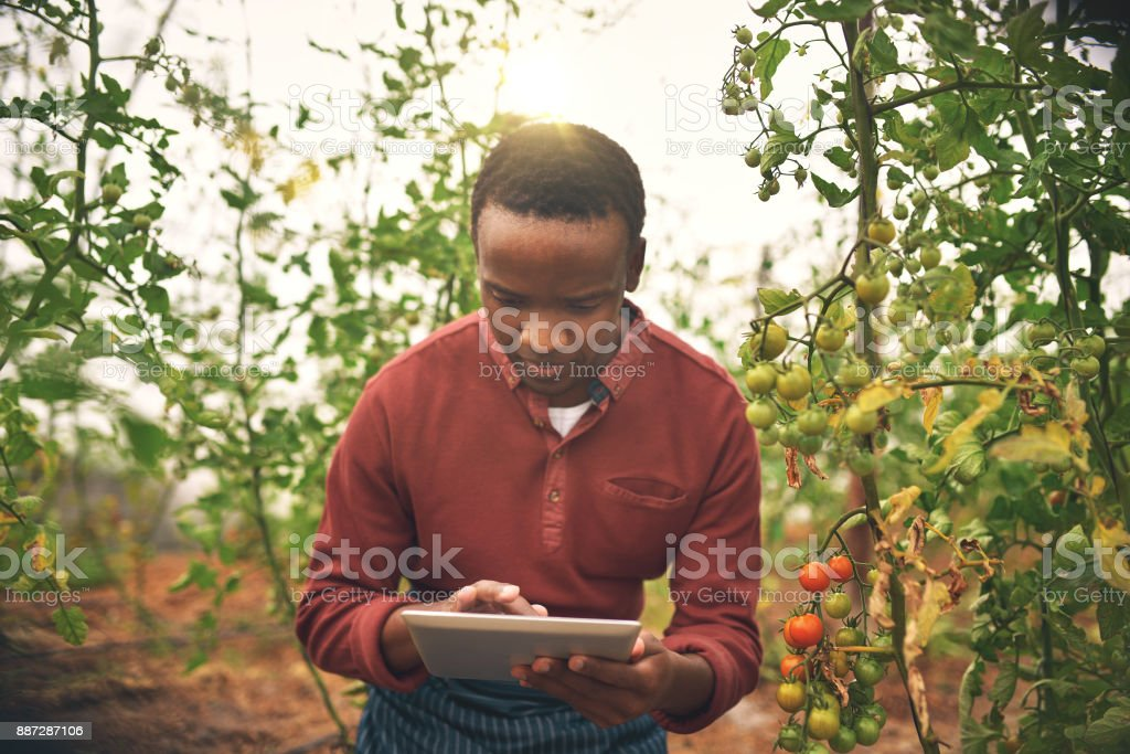 Using technology to manage his farm stock photo