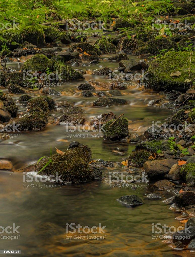 Usovicky creek near Marianske Lazne town stock photo