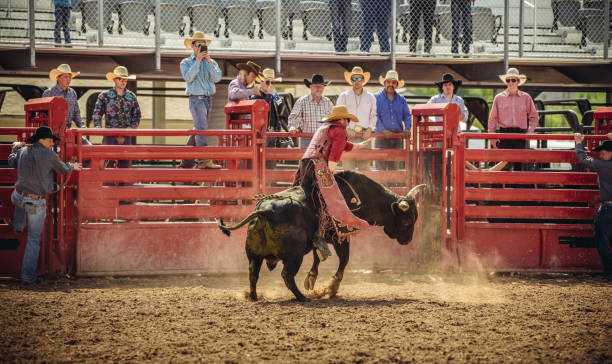 Utah bull riding rodeo stock photo