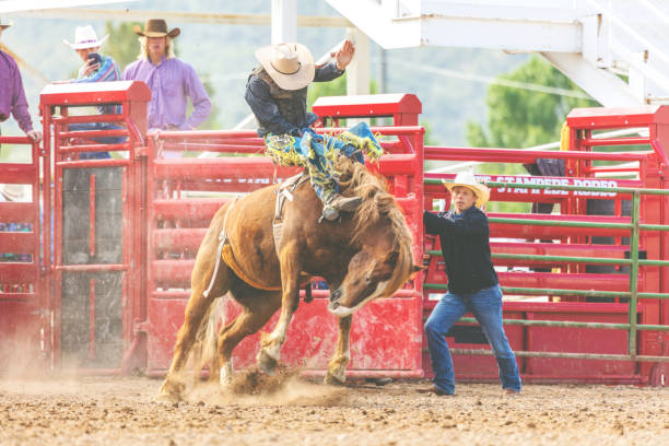 Utah Cowboy Saddle Bronc Bareback Riding Western Outdoors and Rodeo Stampede Roundup Riding Horses Herding Livestock stock photo