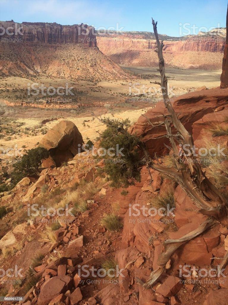 Schoonheid van de woestijn van Utah - Royalty-free Afgelegen Stockfoto