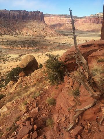 Schoonheid Van De Woestijn Van Utah Stockfoto en meer beelden van Afgelegen