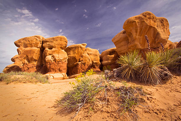 Utah desert landscape Dramatic rock formations and spring flowers in the Devil's Garden close to Escalante, Utah navajo sandstone formations stock pictures, royalty-free photos & images