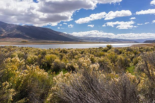 Utah. Artemisia tridentata lungo la strada statale 24 Vicino al bacino Koosharem - foto stock