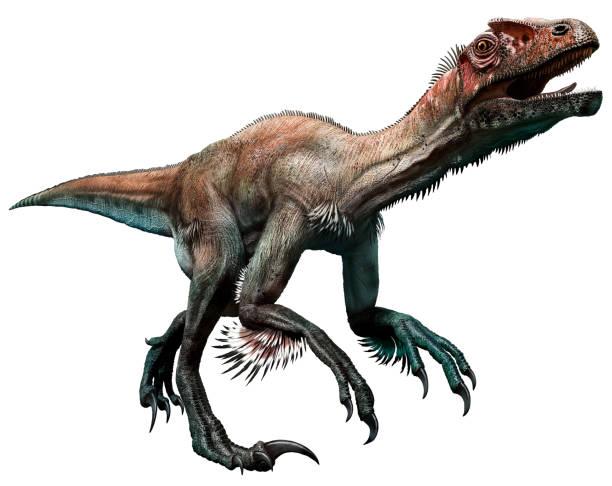 Картинки по запросу Utahraptor prime