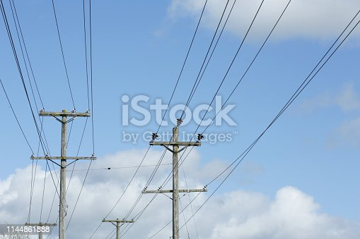 Rows of utility poles with a cloudy background in Langley, British Columbia.