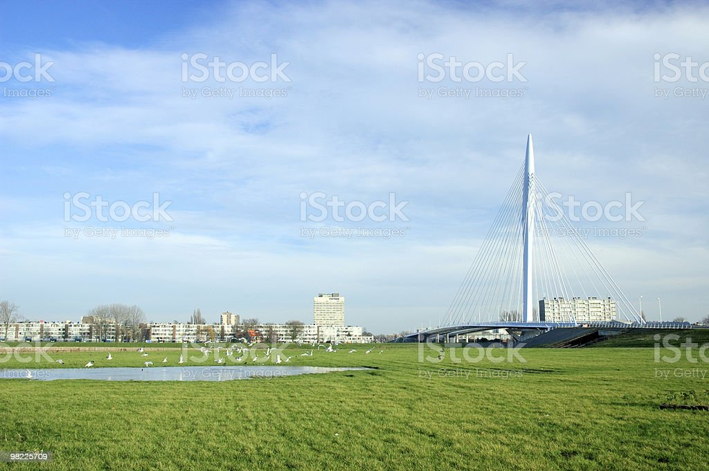 Utrecht skyline with cable-stayed bridge Prins Clausbrug royalty-free stock photo