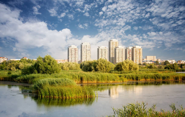 Vacaresti Nature Park - Delta between the blocks with skyscrapers in the background, in Bucharest, Romania. stock photo