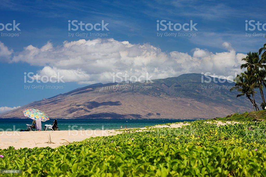 Vacation Beach stock photo