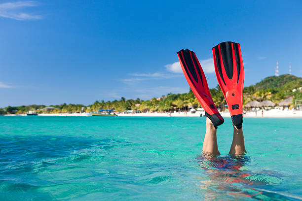 Vacation Lifestyles-Snorkeler Diving in Ocean Red fins sticking up out of the water as a male snorkeler dives under the water. roatan stock pictures, royalty-free photos & images