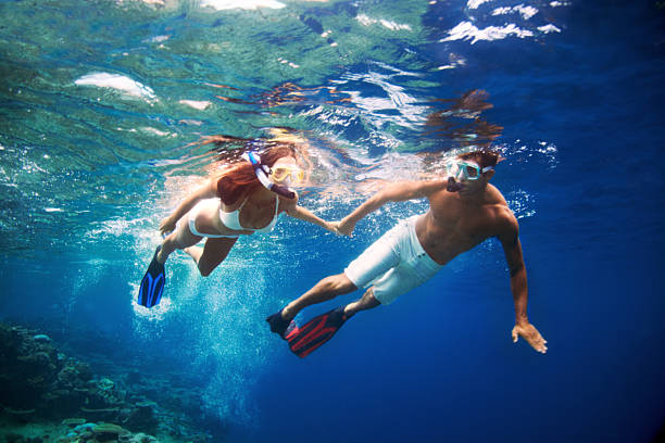 Vacation of a lifetime!  snorkel stock pictures, royalty-free photos & images