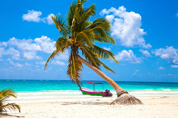 vacations and tourism concept: caribbean paradise. - playa del carmen stock photos and pictures
