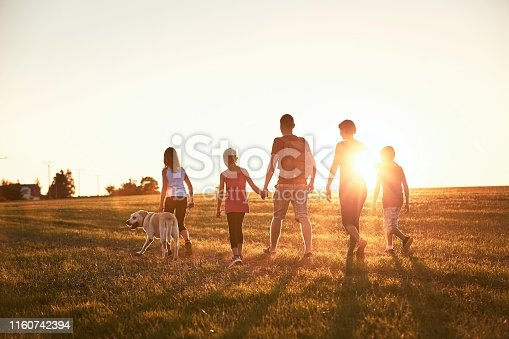 Vacations in countryside. Silhouettes of family with dog walking on meadow at sunset.