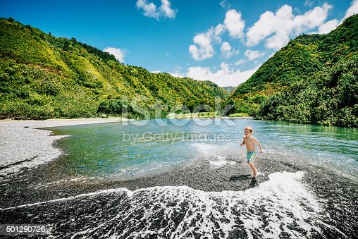 istock Vacations in Maui with Children 501290726