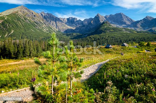 1130859000 istock photo Vacations in Poland - Gasienicowa Valley, Tatra Mountains, Poland 1088630456