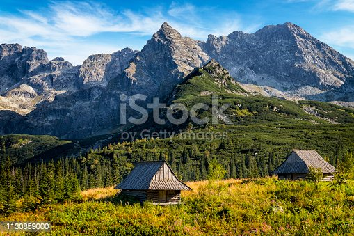 istock Vacations in Poland - Gasienicowa Valley, Tatra Mountains, Poland 1130859000