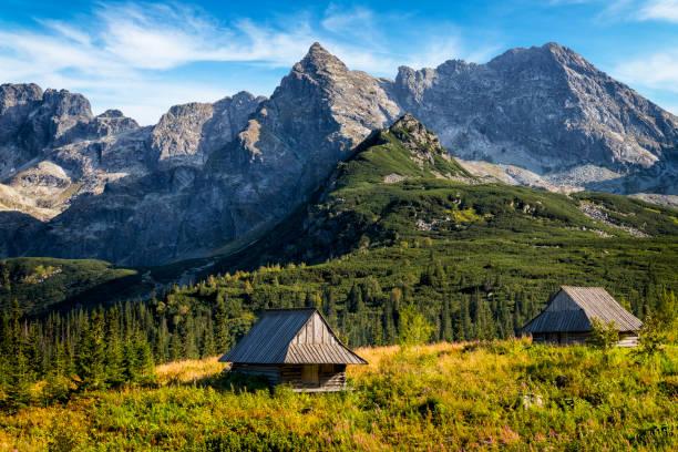 폴란드의 휴가-gas에 니 시 owa 계곡, 타트라 산맥, 폴란드 - 카르파티아 산맥 뉴스 사진 이미지