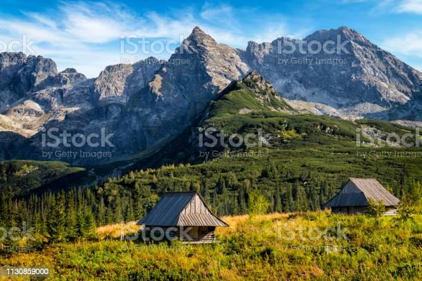 Vakanties In Polengasienicowa Valley Tatra Gebergte Polen Stockfoto en meer beelden van Avontuur