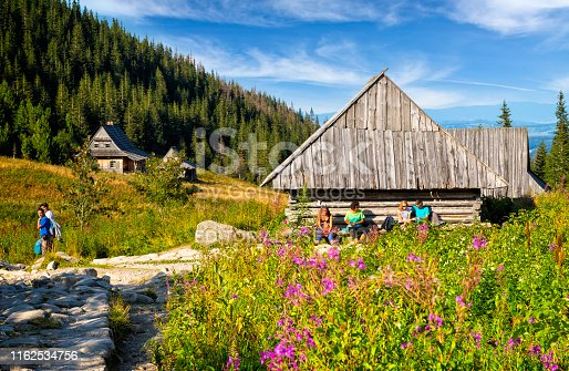 1130859000 istock photo Vacations in Poland - Group of tourists on a trip to the Tatra Mountains 1162534756