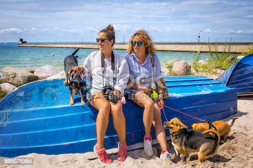 Family spends holidays with dogs on the beach, Hel, Poland