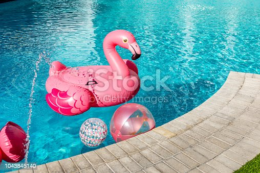 Nice vacations with swimming pool, coconut palm tree and flamingos in Miami Beach.
